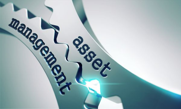 Asset Management: Alignment with the organizational needs